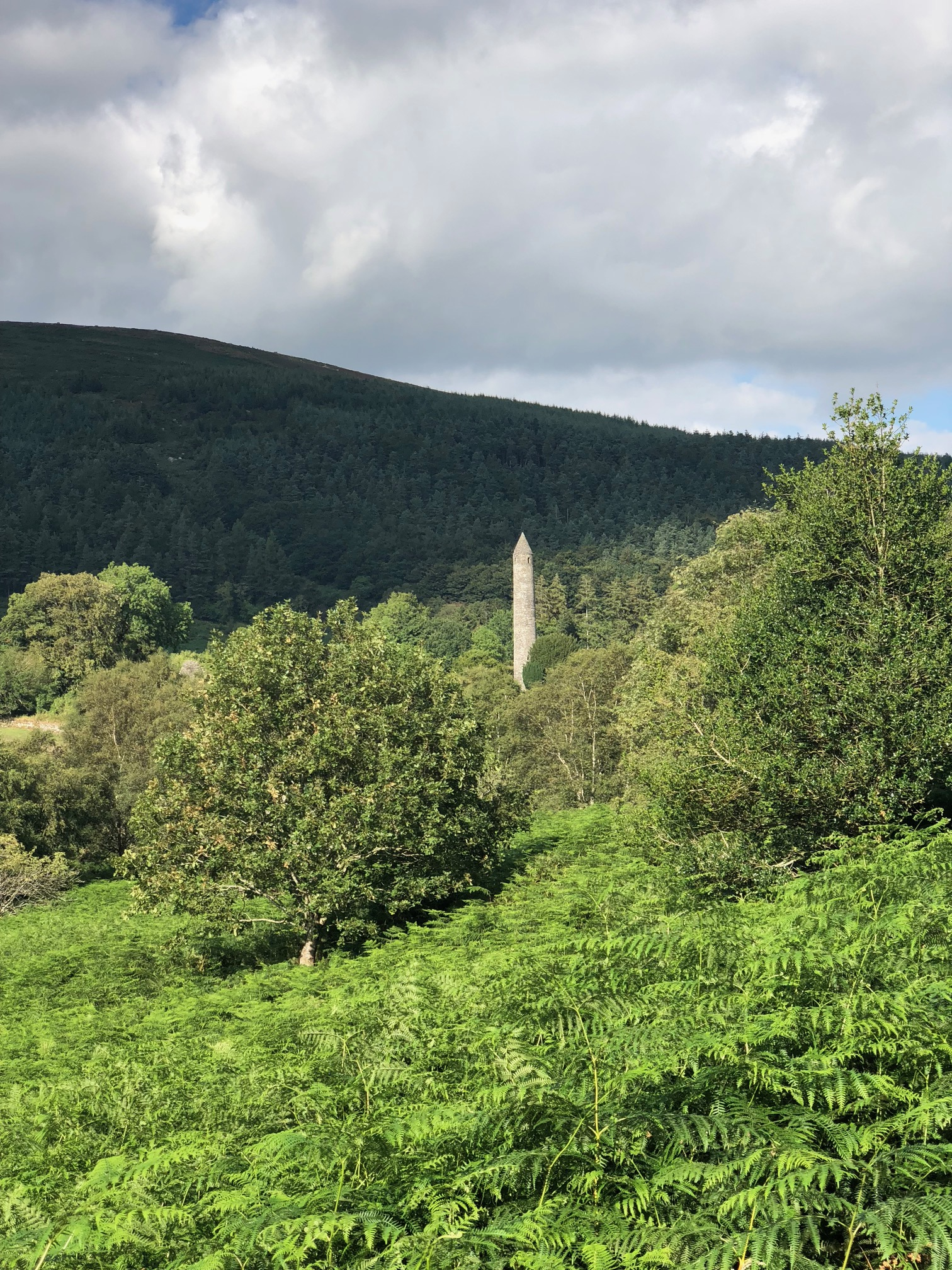 A round stone tower with a conical roof sticks out above the trees, before a dark hills.